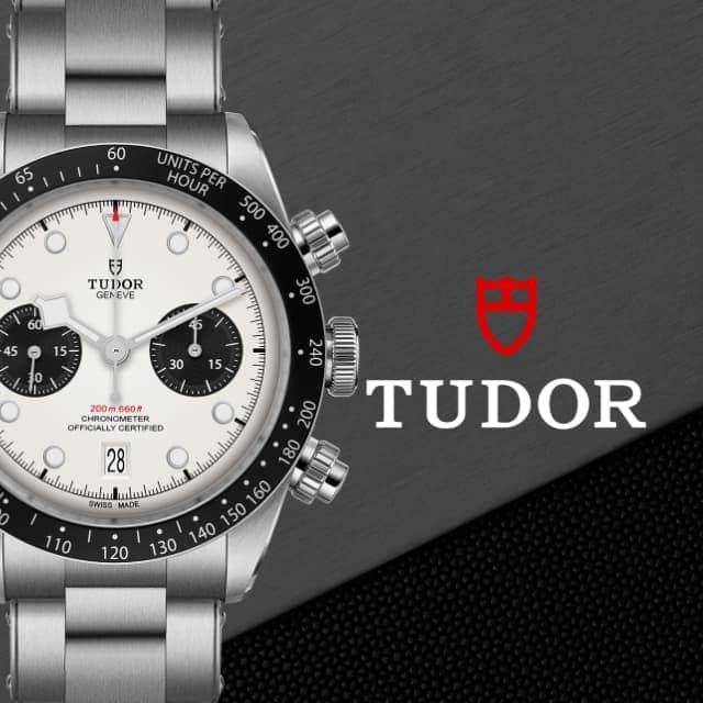 Tudor en Torres Joyas